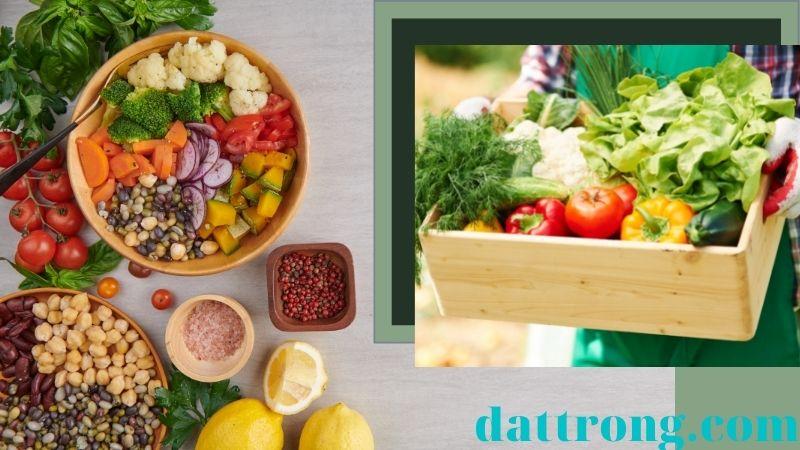Cách trồng rau trên sân thượng và lợi ích
