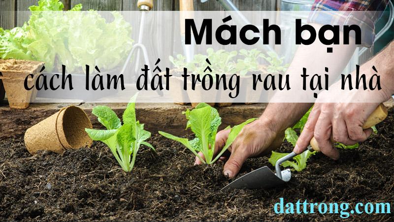 Cách làm đất trồng rau tại nhà