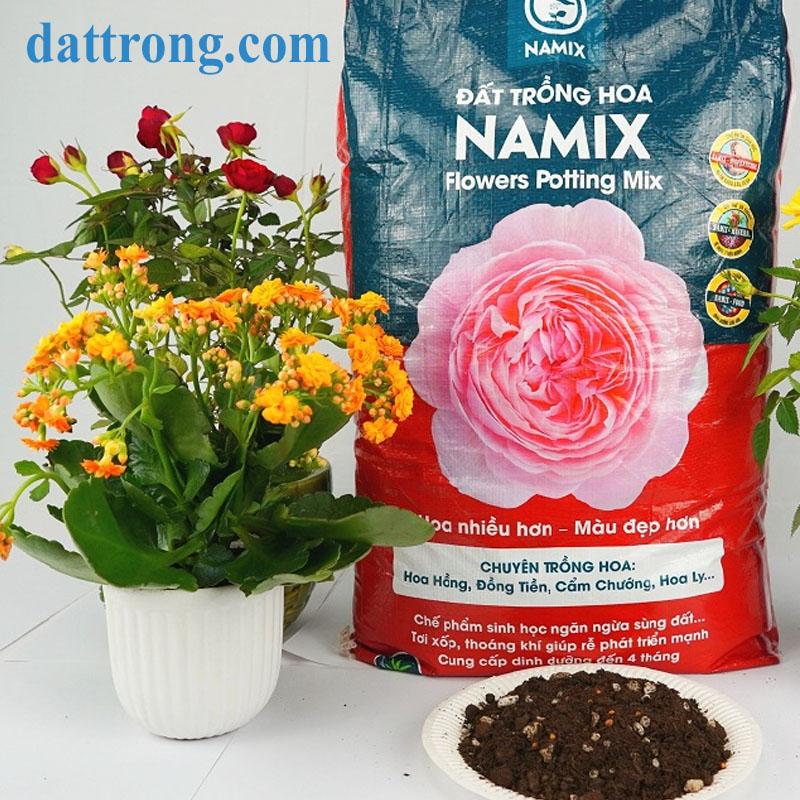 đất sạch trồng hoa namix